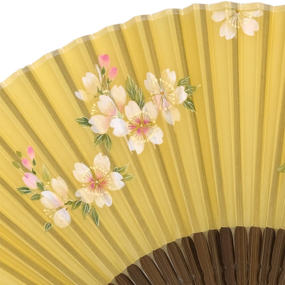 Silk fan, yellow daffodil, cherry blossom illustrated