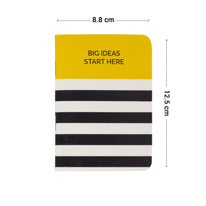 Pock size big ideas start here book