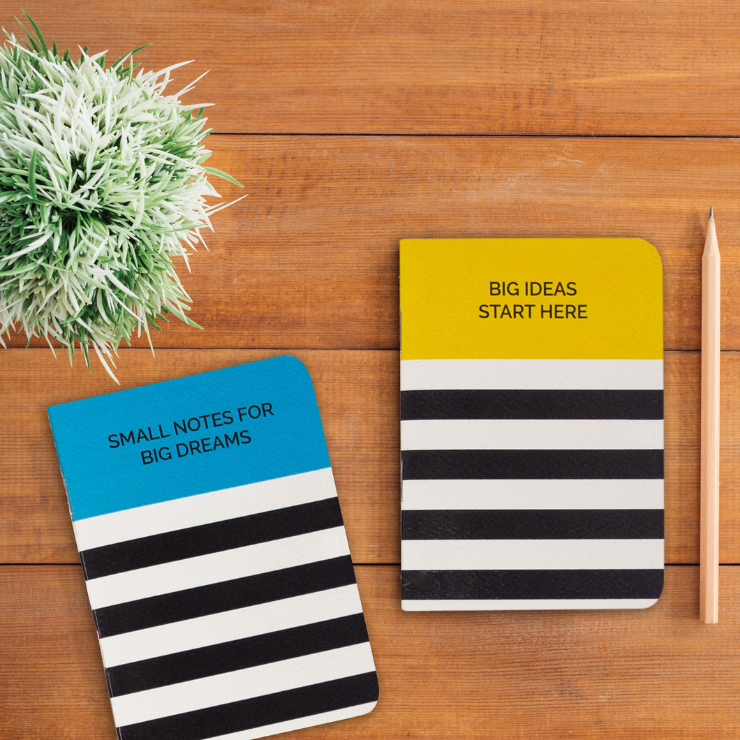 Big ideas set of 2 pocket books
