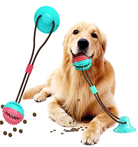 Molar Bite Dog Toys - LazySelect
