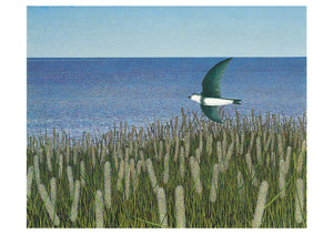 Alex Colville Boxed Cards