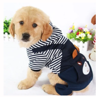 Striped Rabbit Pet Hoodie - Pawgood