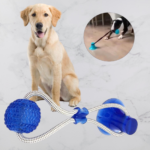 Interactive Dog Chewing Ball - Pawgood