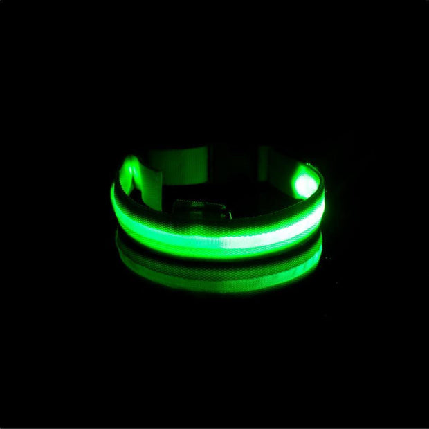 LED Dog Collar - USB Rechargeable - Pawgood