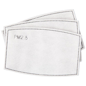 PM2.5 Filter Packs