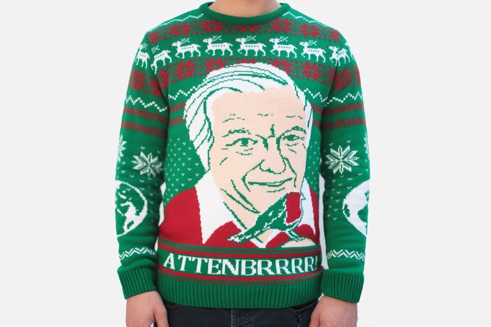 david attenborough xmas sweater front