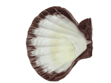Load image into Gallery viewer, Decorative Sea Shell (025)