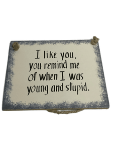 """When I Was Young And Stupid"" 5""X4"" Plaque"