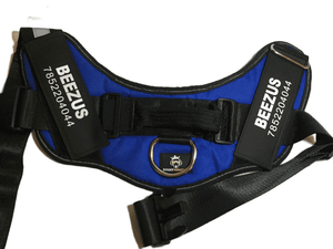Doggy Kingdom Harness (L) (009)