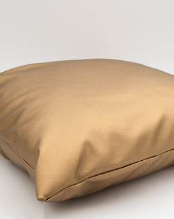 Metallic Pillow