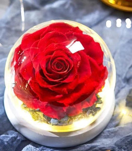 Exclusive Eternal Rose Collection in Glass Dome - Royal  Holiday Shop