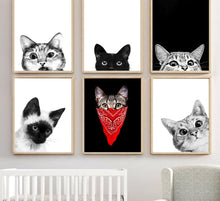 Load image into Gallery viewer, The Lookout  Kitty Cats Black White Canvas Painting - Royal  Holiday Shop