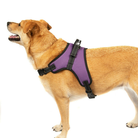 PETLAVISH™ No-Pull Dog Harness: Adjustable, Soft, Breathable Safe Control Vest S-XXL Dog Harness PETLAVISH™