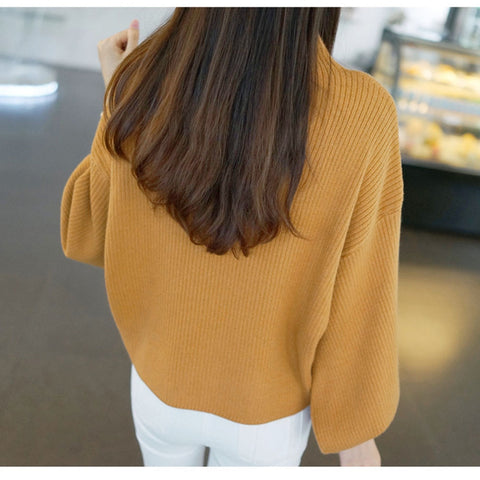 Thick Solid Color Half high Collar Sweater