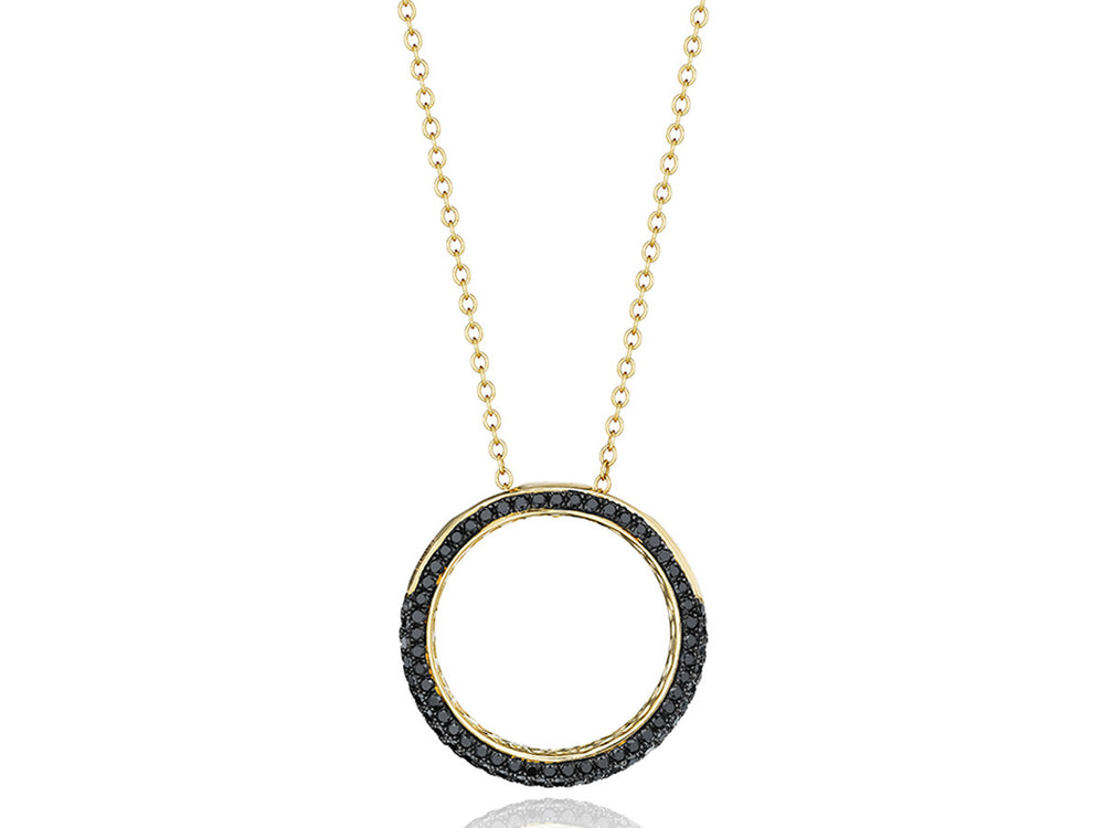 Revolution Ring Necklace