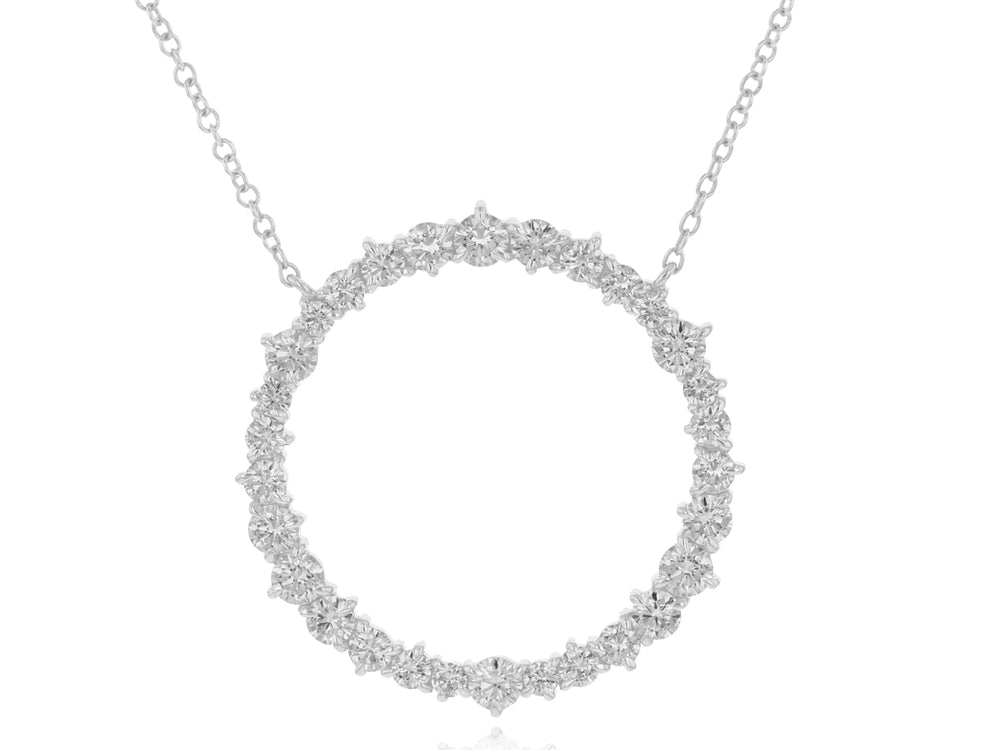 Enchanted Large Loop Necklace