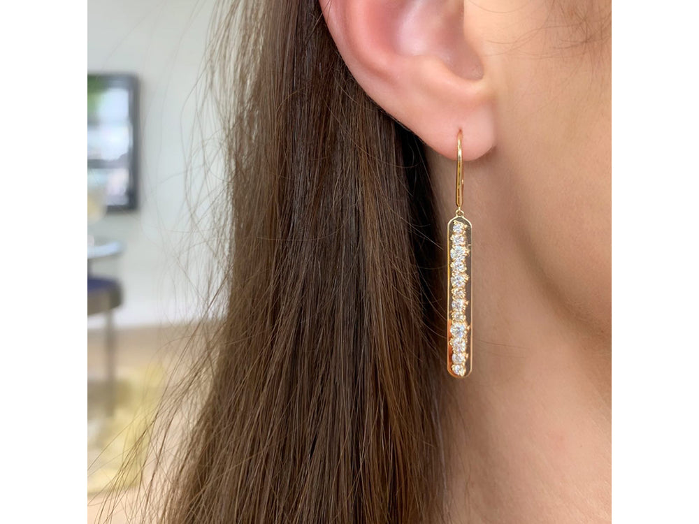 Enchanted Plate Leverback Earrings