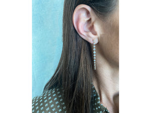 Load image into Gallery viewer, Enchanted Graduated Drop Earrings