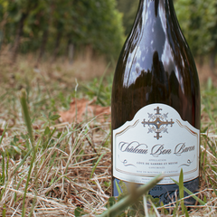Chateau Bon Baron wine in vineyard