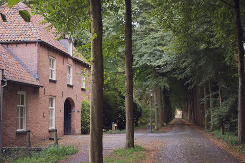 Entrance to Sint Catharinadal in Netherlands