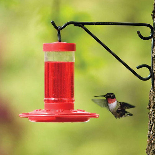 16oz. Hummingbird Starter Kit
