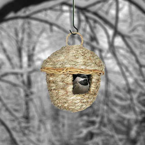 Brown Acorn Roosting Pocket