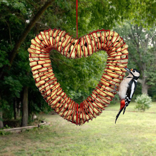 Heart In-shell Coil Peanut Feeder