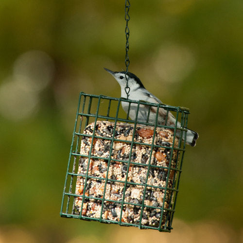 Quality Suet Cage