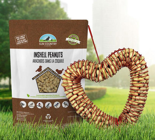 Father's Day Sale: Heart Coil Peanut Feeder with Free Refill
