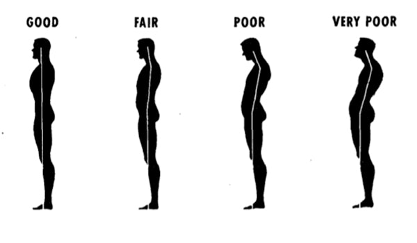 Image result for Perfect Posture