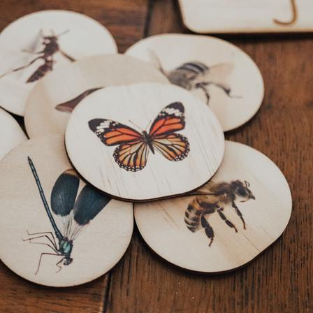 Bug Magnets - Set of 14