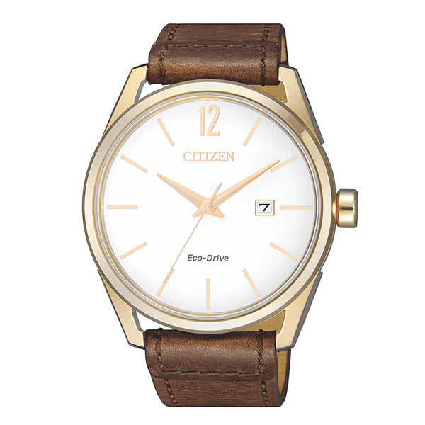 Citizen Gents Watch Eco-drive STRP SSYP WR100