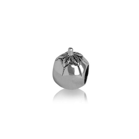 Evolve Charms Silver Tomato Sauce Bottle LK114