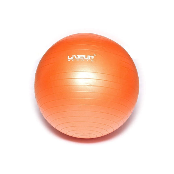 LiveUp Sports Anti Burst Gym Ball with Pump 65 cm