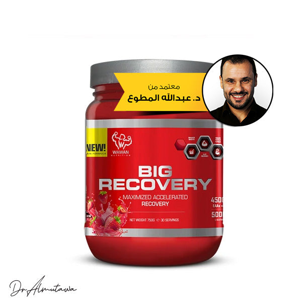 Wawan Nutrition - Big Recovery