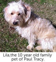 Lila, 10 year old Family Pet of Paul Tracy