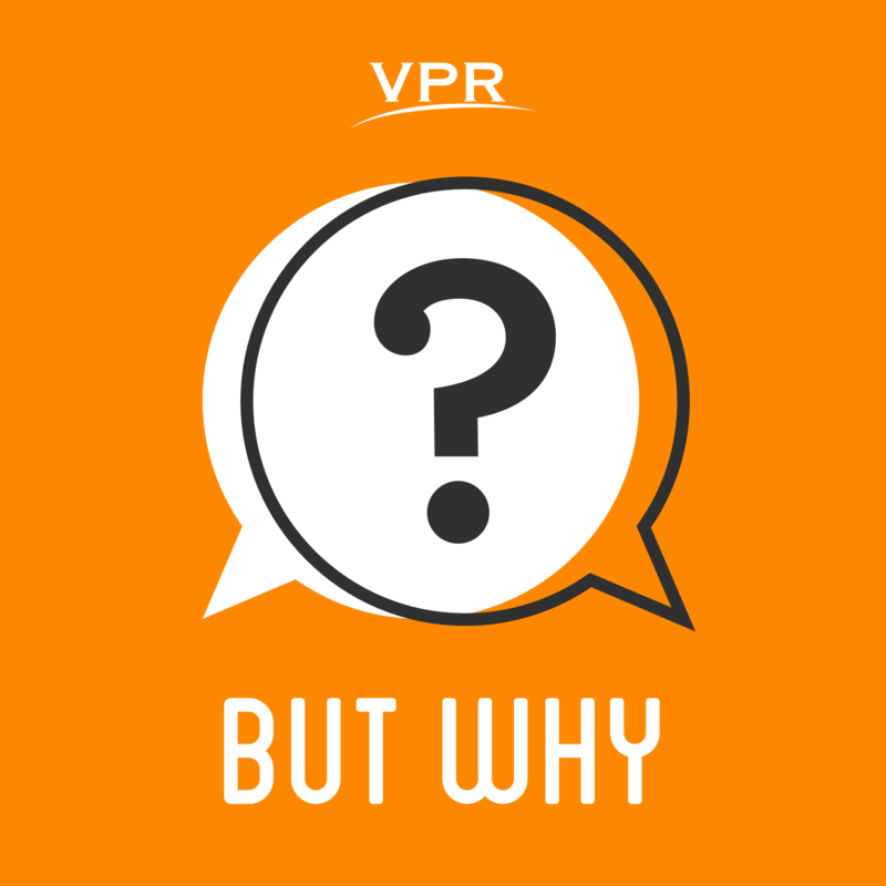 UBut Why: A Podcast for Curious Kids