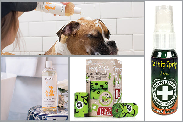 eco-friendly pet gifts