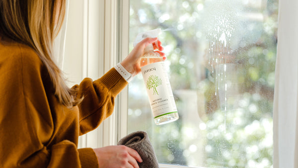 natural window cleaner