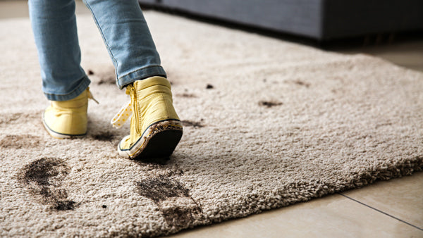 how to remove dirt from carpet
