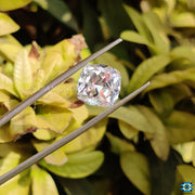 cushion divine moissanite