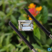 baguette cut moissanite - diamondrensu