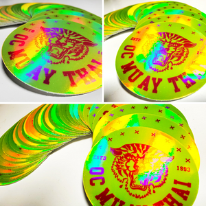 Tiger Holographic Stickers - 3 pack
