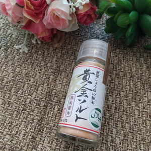 Japanese Salt and Soy Source powder 20g Healthy ver./ 黄金ソルト減塩しょうゆ