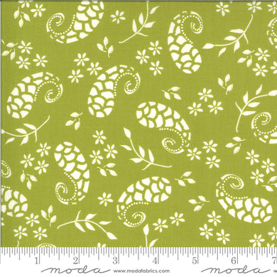 Balboa Marina Pistachio 37592 13 - Fabric by the Yard