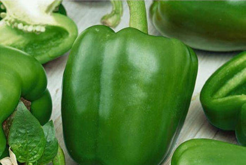 Organic green peppers