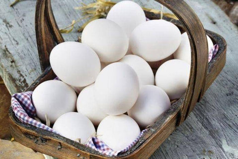 Pine Belt Eggs Grade A Large Eggs - 1 Dozen