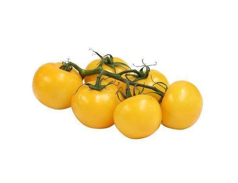 Yellow Vine Tomato