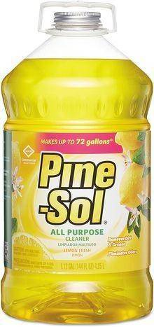 Clean And Fresh PineSol All Purpose Cleaner - 28 Ounces