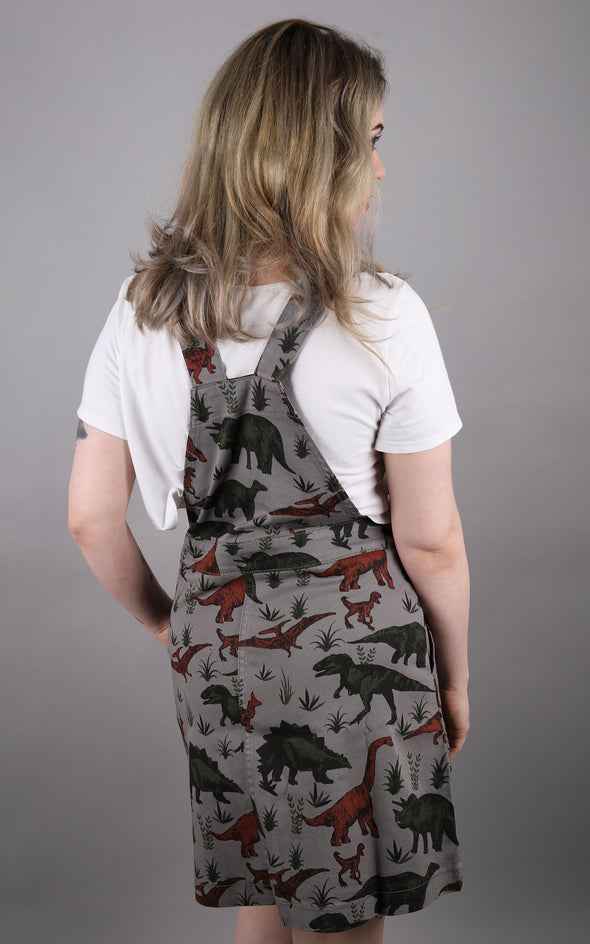 Alice is wearing grey dinosaur pinafore dress by Run and Fly